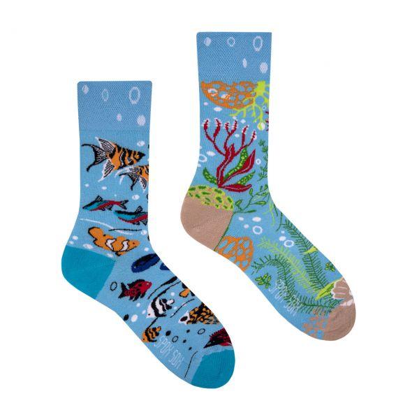 Spox Sox Socken Aquarium
