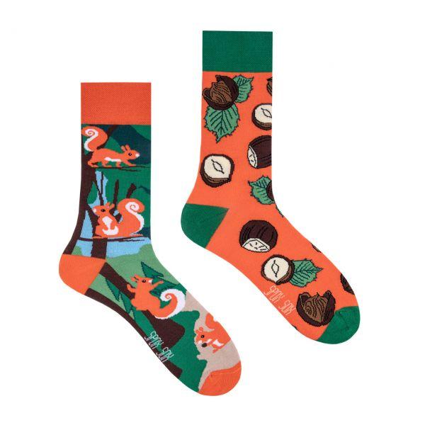 Spox Sox Socken Eichhörnchen